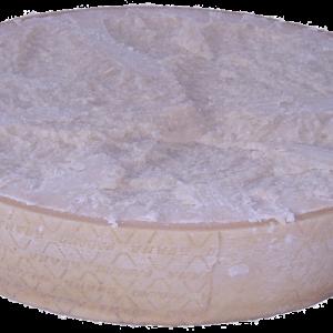 Foto del Grana Padano 1/2 forma orizzontale