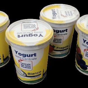 yogurt 500 g